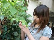 natsuki 夏希 thumb image 05.jpg