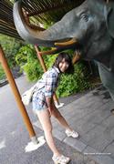 tsugumi  thumb image 02.jpg
